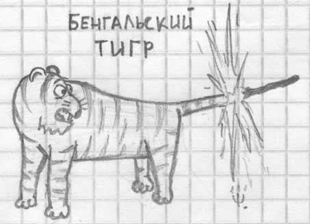 www рисунки ru: